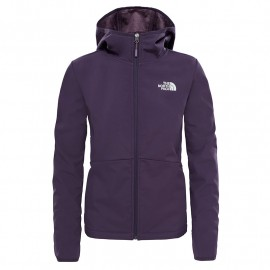 chaqueta THE NORTH FACE tanken soft shell w