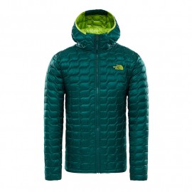 The North Face M THERMOBALL PRO HOODIE BOTANICAL GARDEN GREEN
