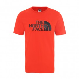 camiseta THE NORTH FACE easy tee